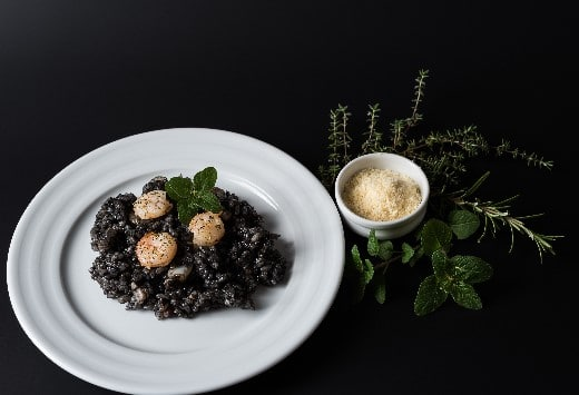 risotto-encre-seche-stjacques